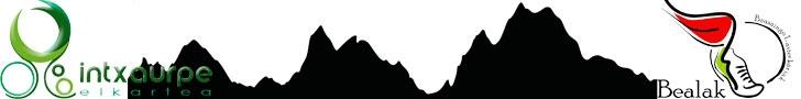 XABIER MENDIZABALEN OROIMENEZKO VIII. MENDI LASTERKETA (ARRIARAN) - 23 KM.