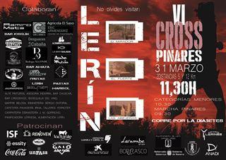 VI CROSS PINARES DE LERIN