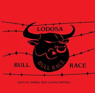 Bullrace