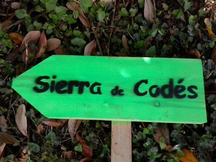 Foto galería Trail Sierra de Codes